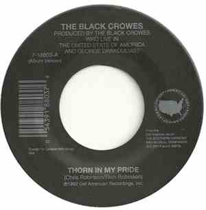 The Black Crowes - Thorn In My Pride / Sting Me